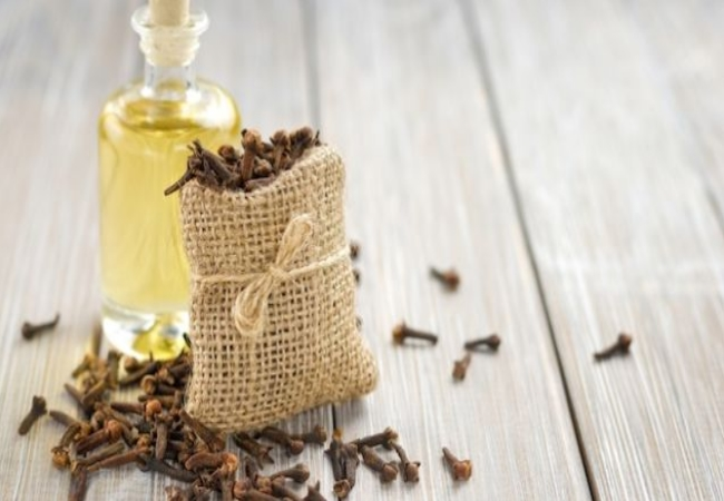 Clove Oil For Gum Infection