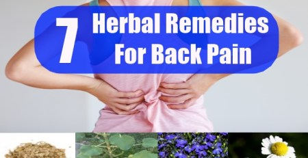 Herbal Remedies For Back Pain