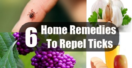 Home Remedies To Repel Ticks
