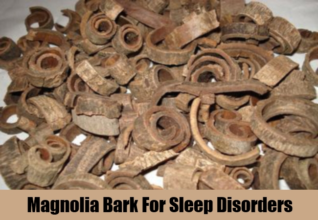 Magnolia Bark For Sleep Disorders