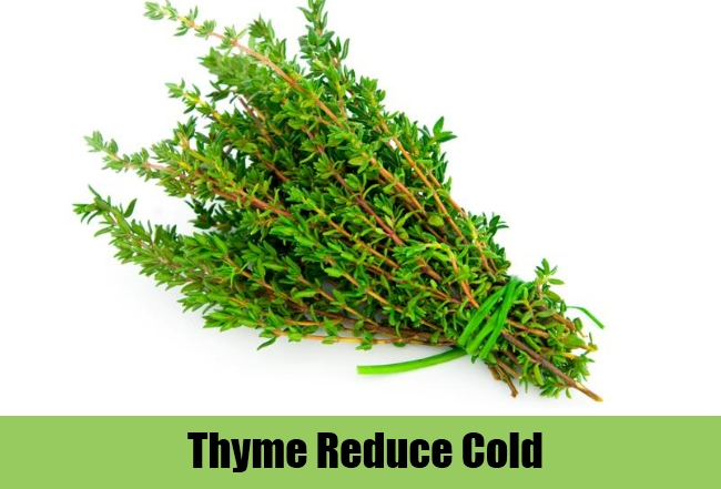 Thyme Reduce Cold