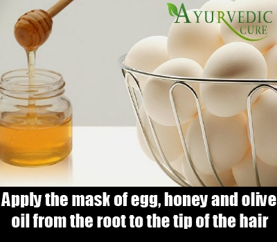 Egg Honey Mask
