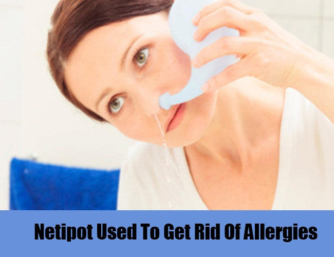 Netipot Used To Get Rid Of Allergies