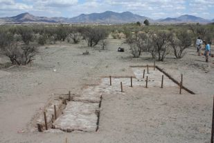 Excavations within Feature 18, an area of stained soil, revealed trenches and postholes for mission-period animal pens and fences at the Guevavi Mission. Modern posts have been placed in postholes to show their location