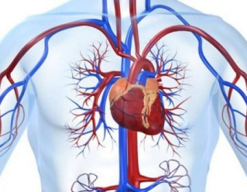 ''Ürək-damar xəstəlikləri ''cavanlaşır''''