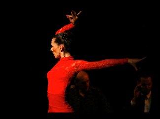 azabache_flamenco-0004