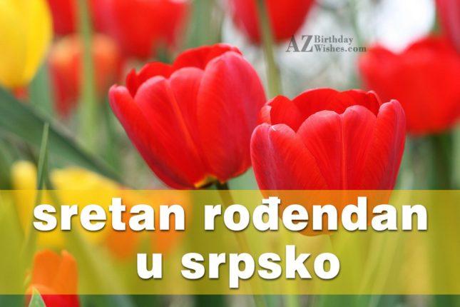 Birthday Wishes In Serbian