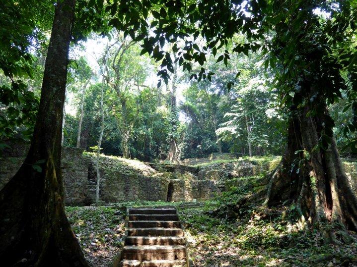 Overgroeide ruïnes. Palenque