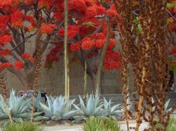 Mooie kleurtjes of zo. Oaxaca