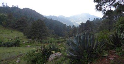 Mooi uitzichtje onderweg naar Benito Juarez.