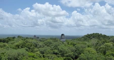 Het uitzicht vanaf templo IV. Tikal