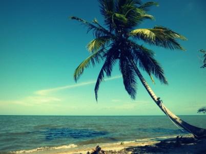 Beach Hopkins!