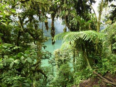 Het turquoise van het kratermeer kleurt lekker bij de jungle. Cerro Chato (Costa Rica)
