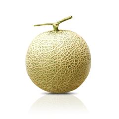 melone-fronte