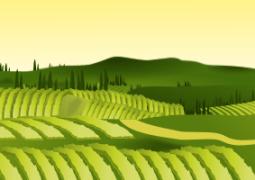 Aziende agricole 2013