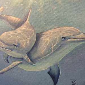 Картина с дельфинами купить