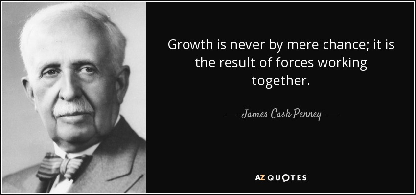 Growth is never by mere chance; it is the result of forces working together. - James Cash Penney