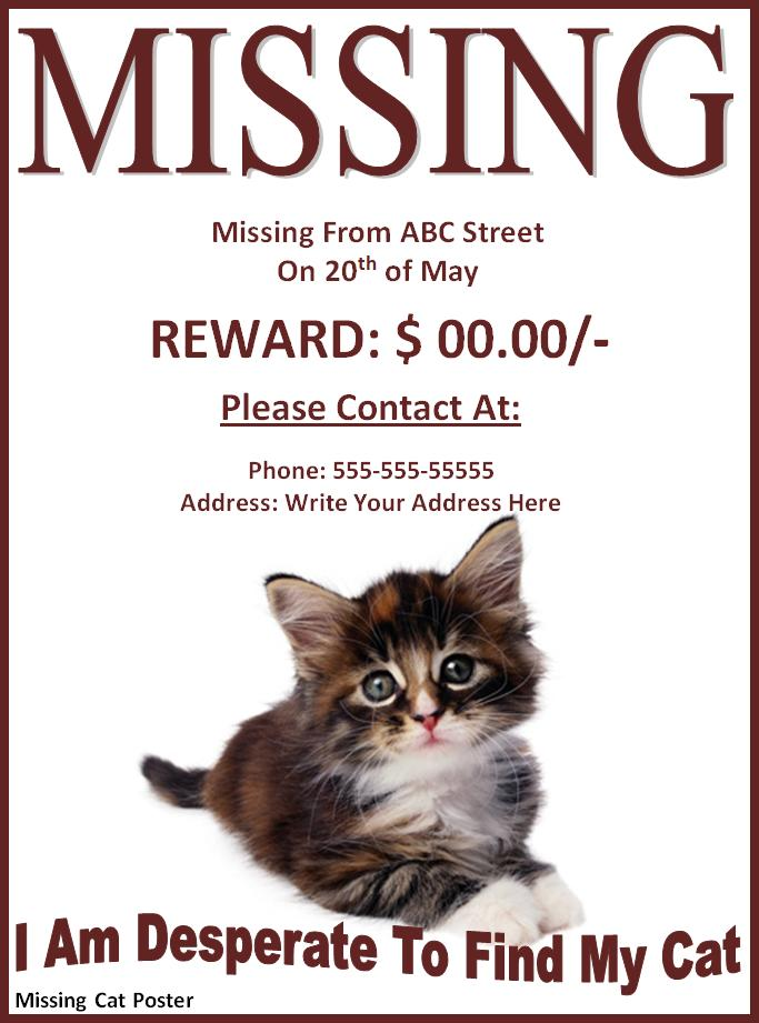 Lost Pet Template. missing cat poster freewordtemplates net. lost ...