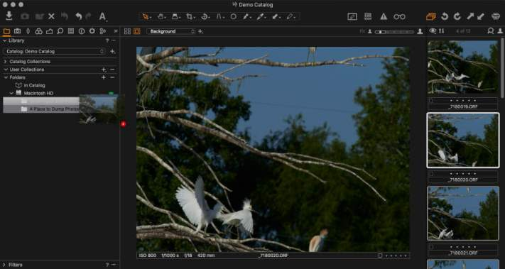 Moving 4 images to a new folder in Capture One.