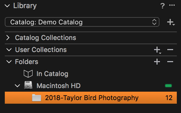 Photos imported to a specific folder show up under the Library.