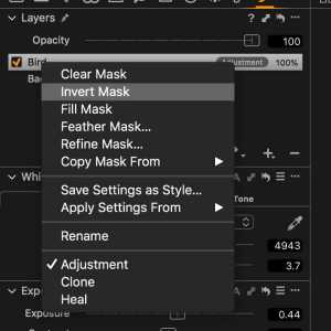 Capture One 11 includes Invert Mask.