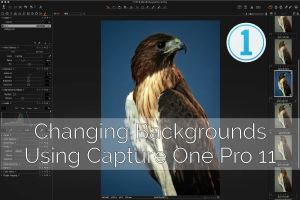 Capture One: Changing Background Colors Using Adjustment Layers