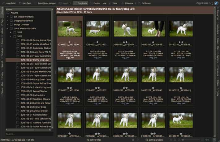 Digikam Master Archive images by Project Name - Setting Up a Project Based Workflow