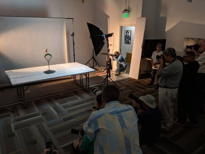 BTS shot of photographers photographing a bird in a studio.