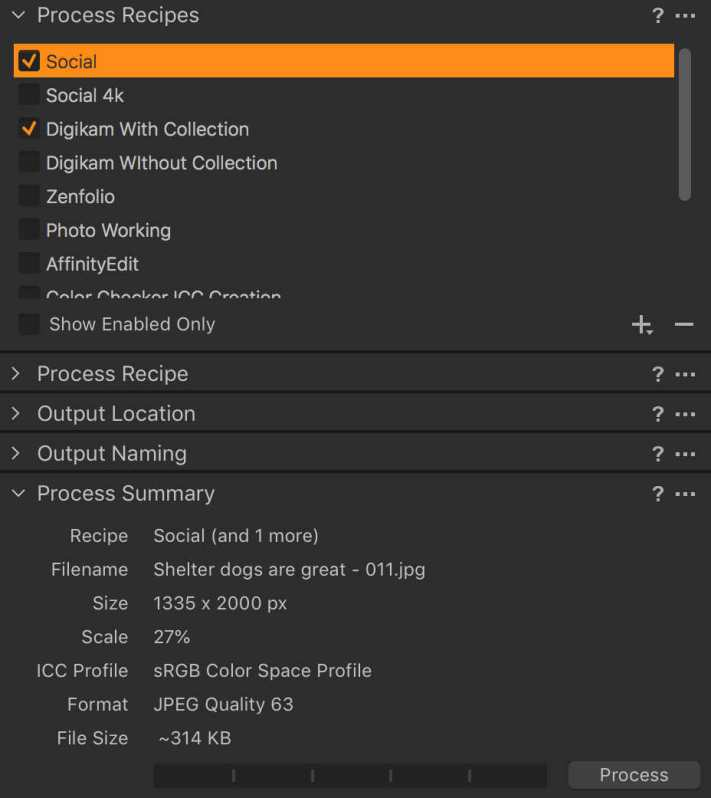 Capture One Process Recipe setup to export two recipes at once.