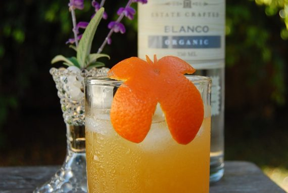Olaquila Cocktail