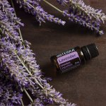 Lavender Essential Oil Dōterra B Zen Perfect Skin With Natural Choice