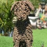 Rope Dog