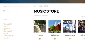 Snapshot of Music Store with Products