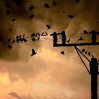 Stormy Sky behind electrical lines with birds