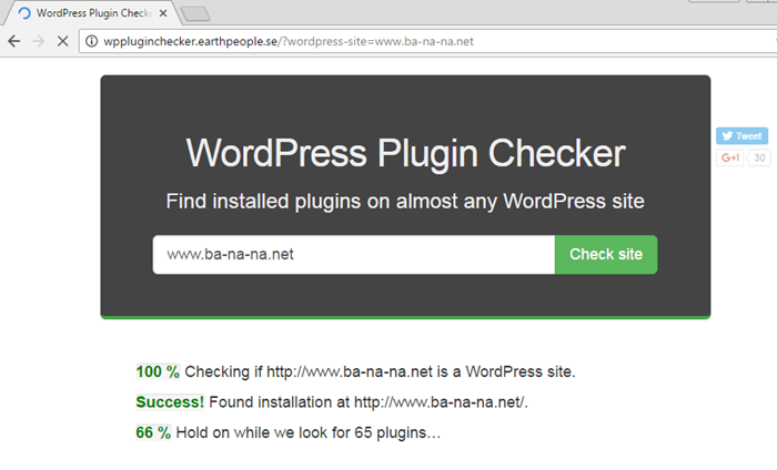 check-wordpress-plugin-2