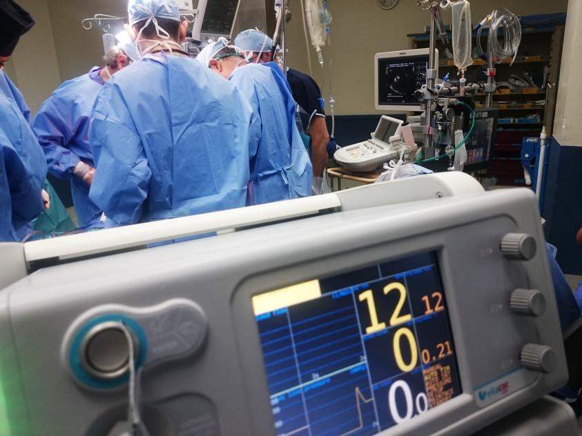 World Health Day-Among Covid Crisis