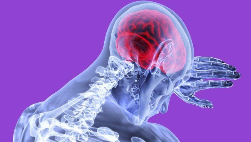 मस्तिष्क का चित्रगुप्त