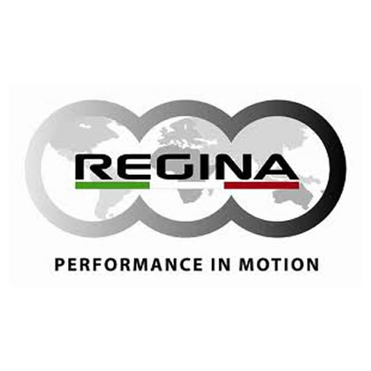 Regina-chain-1