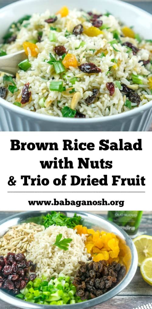 Brown Rice Salad with Nuts and Dried Fruit | Babaganosh.org