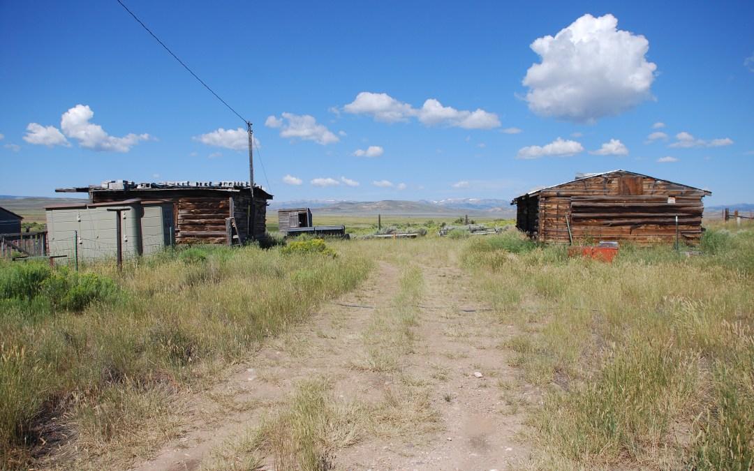 Intensive Immersive Wyoming Trip