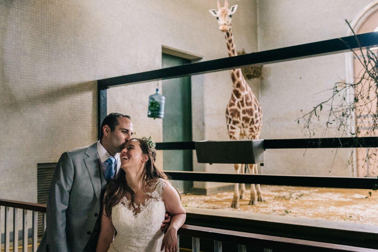 London Wedding Photography zoo wedding