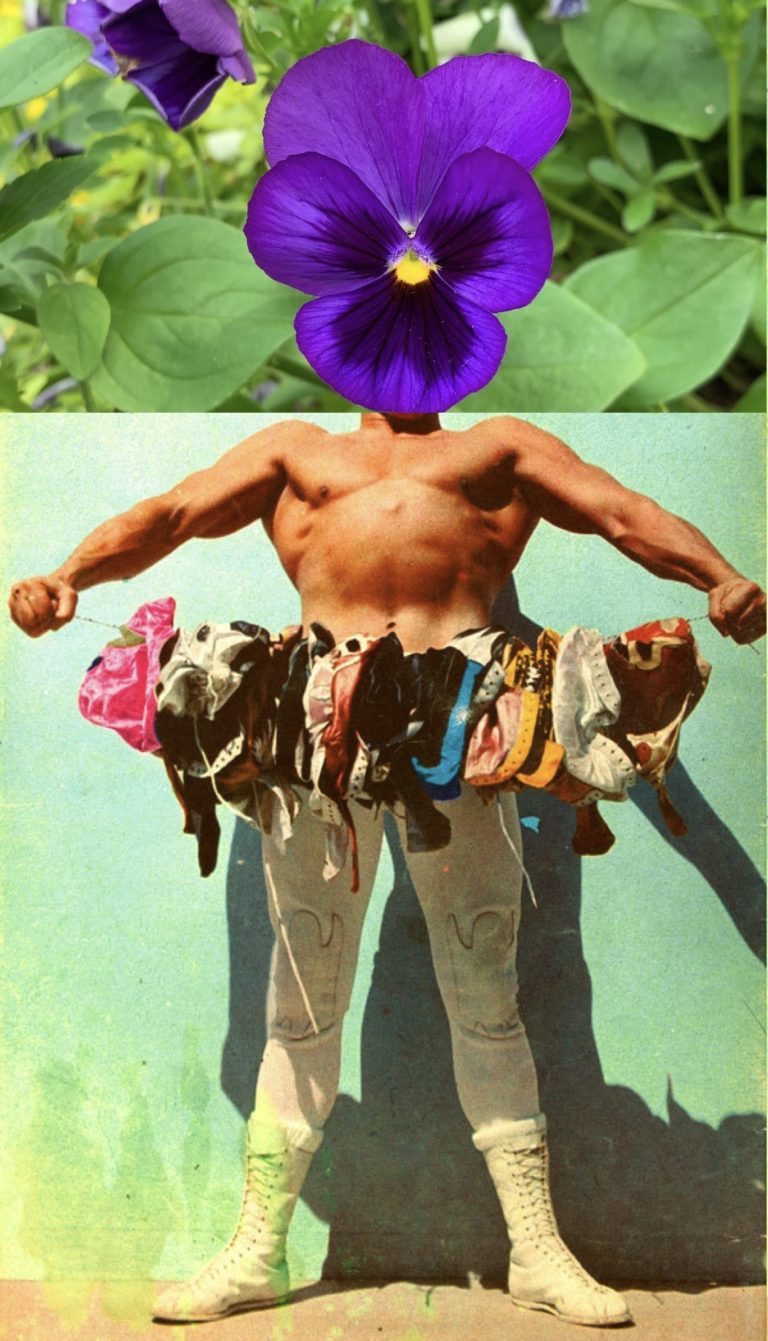 wrestling with flowers austin kleon