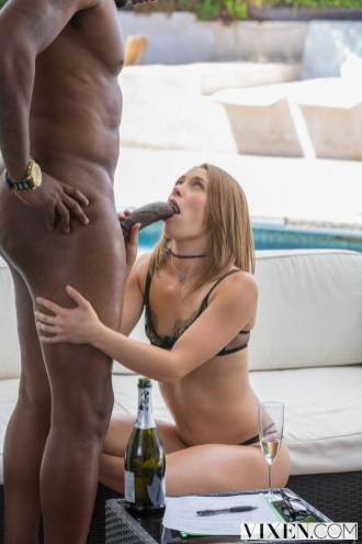 Vixen Kirsten Lee in Gorgeous Real Estate Agent Fucks her Client with Flash Brown 5