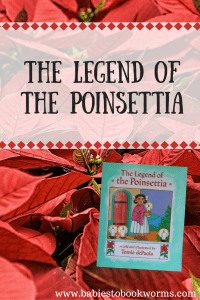 the-legend-of-the-poinsettia