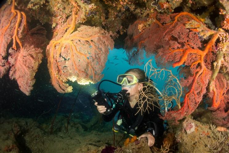Un phare de plongée est nécessaire à Donga Hienga - Hienghène -Nouvelle Calédonie