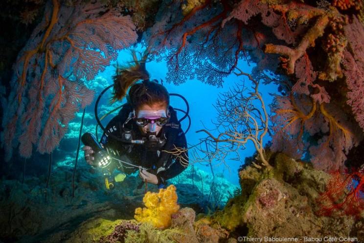Plongées à Hienghène - Nouvelle Calédonie