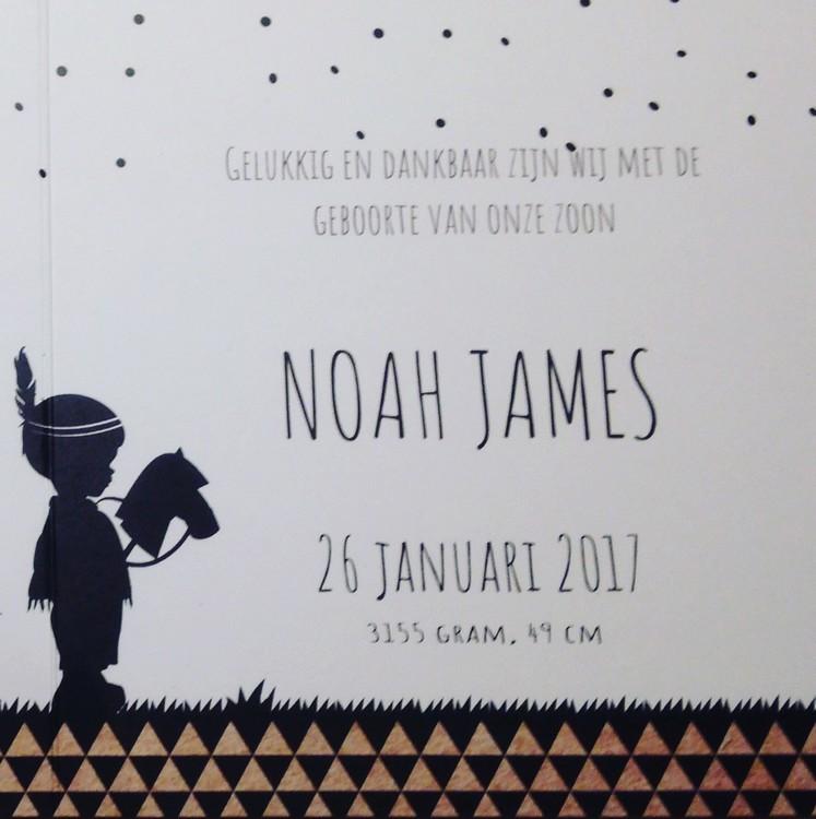 Noah's 6 maanden update