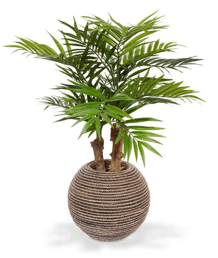 Geen groene vingers? Koop een kunstplant!
