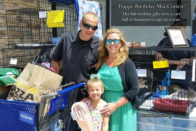 Mias Happy 6th Birthday Gift Donations To Our Cat Rescue