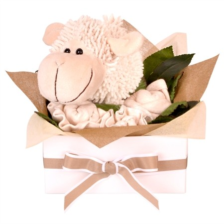 Babybuds baby gifts delivery new zealand same day auckland lamb giftset negle Gallery